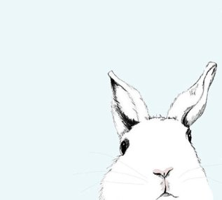 white-rabbit-art-print-20-Corella-Design-on-etsy